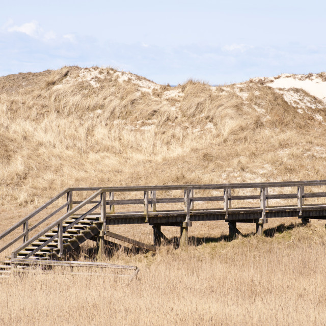 """Dune Landscape in St. Peter-Ording, Germany"" stock image"