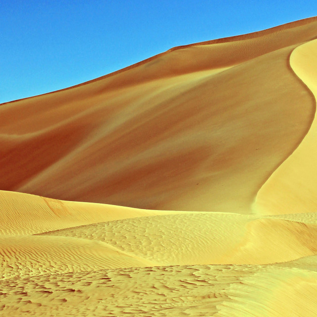 """Golden dunes"" stock image"