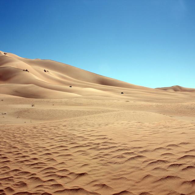 """""""Desert landscape, blue sky"""" stock image"""