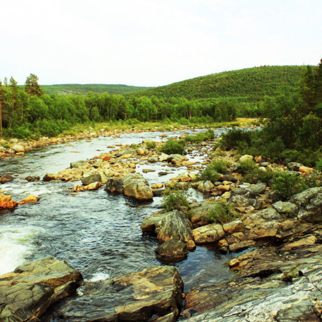 """River in lapland"" stock image"