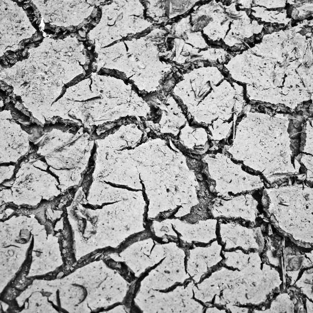 """Parched earth"" stock image"