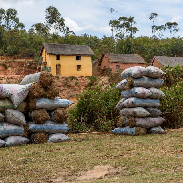 """Sale of bags of charcoal in Madagascar"" stock image"