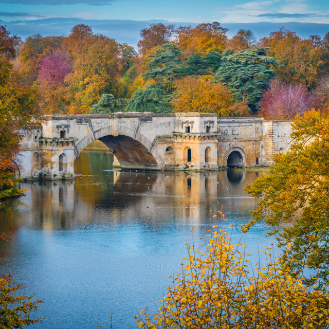 """Blenheim Palace, Autumn Colour"" stock image"