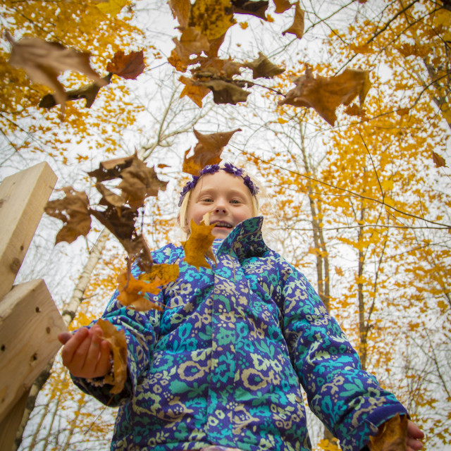 """""""Girl plays with Autumn leaves"""" stock image"""