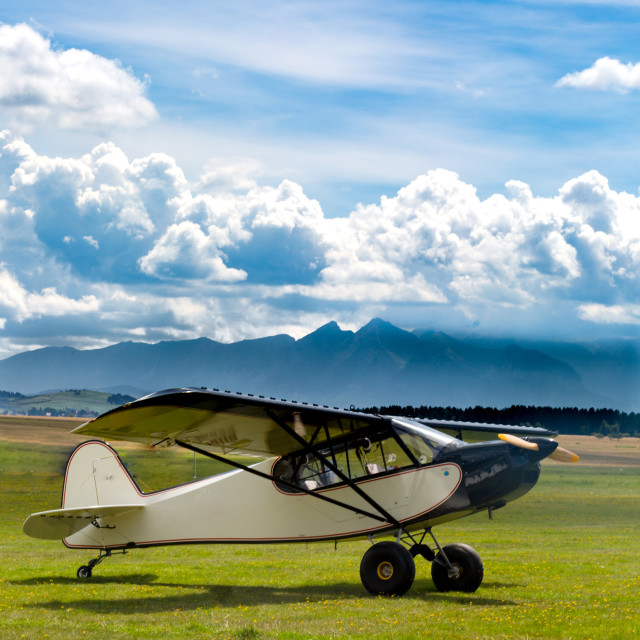 """Retro plane landed on meadow in mountains"" stock image"