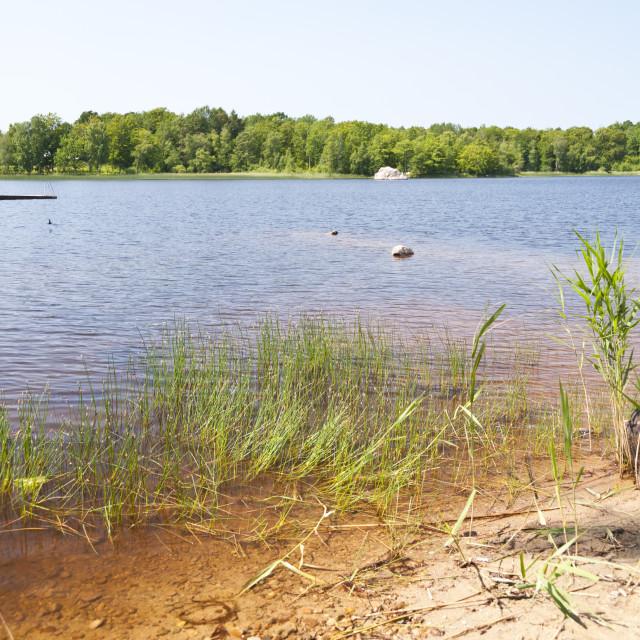 """Lake Asnen in Sweden"" stock image"