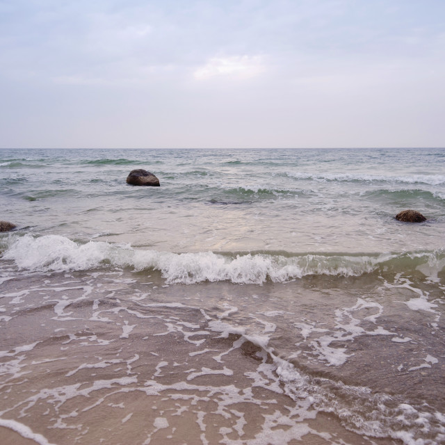 """Baltic Sea on Darss in Germany"" stock image"