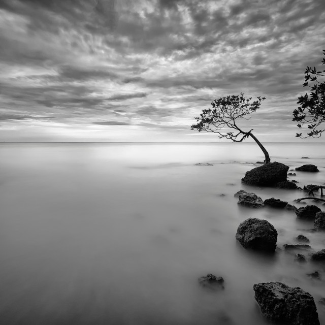 """Art of seascape"" stock image"