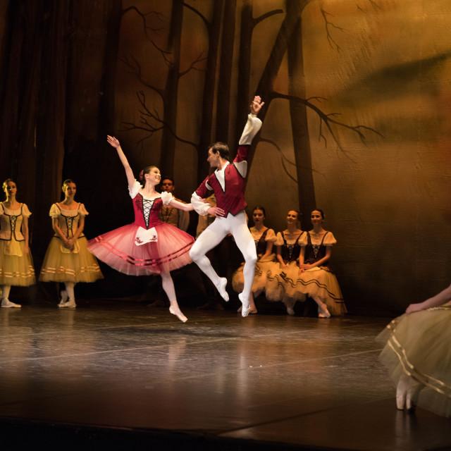 """""""Ballet dancers on scene"""" stock image"""
