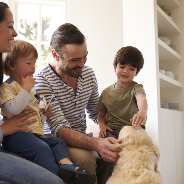 """""""Family Sitting On Window Seat At Home With Golden Retriever"""" stock image"""