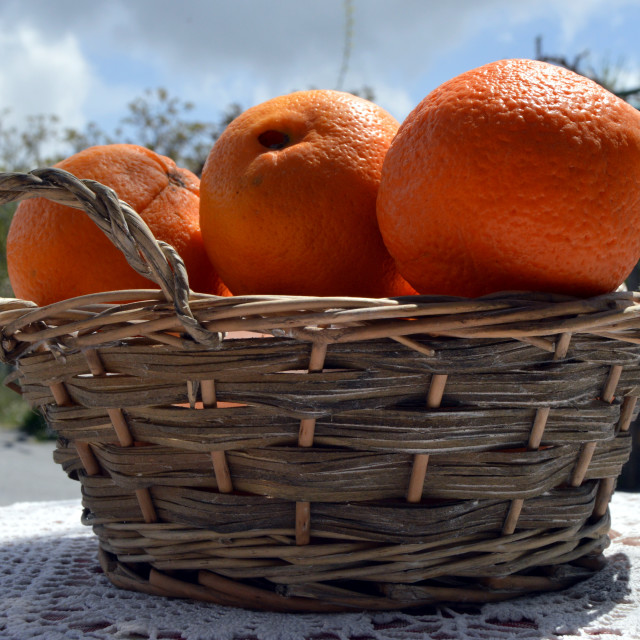 """Several oranges bios in a basket in wicker"" stock image"