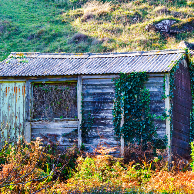 """Old Hut"" stock image"