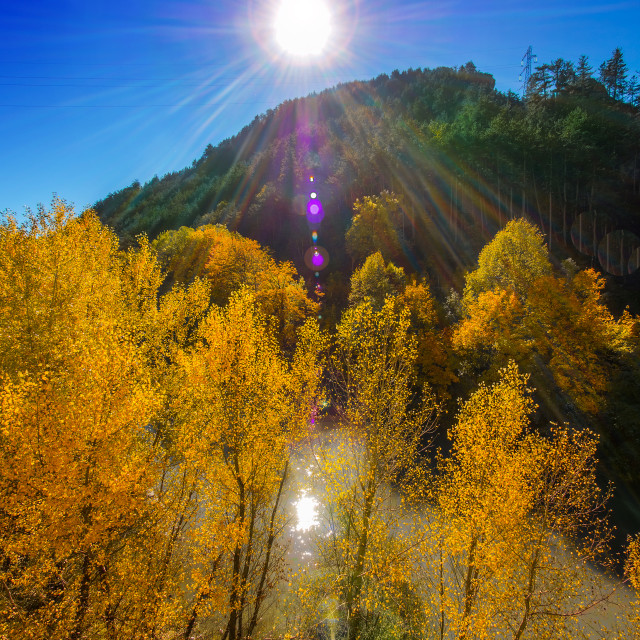 """""""Early fall in France"""" stock image"""