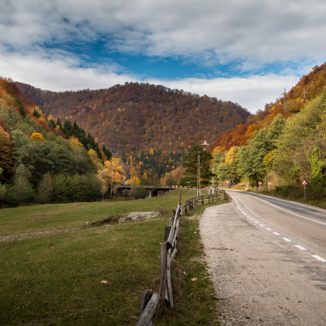 """Autumn Path"" stock image"