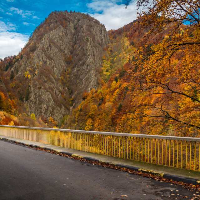 """Autumn Bridge"" stock image"