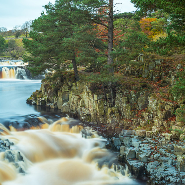 """""""The River Tees flowing through Low Force waterfall in Upper Teasdale, County Durham"""" stock image"""