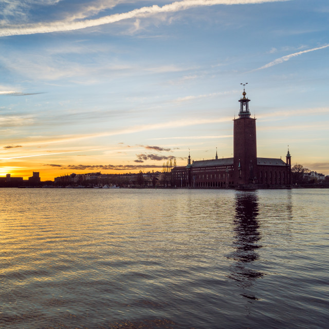 """""""Stockholm Town Hall"""" stock image"""