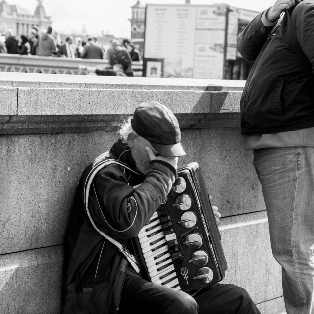 """Accordion Player"" stock image"