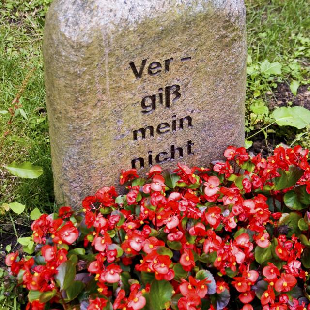 """Graveyard"" stock image"