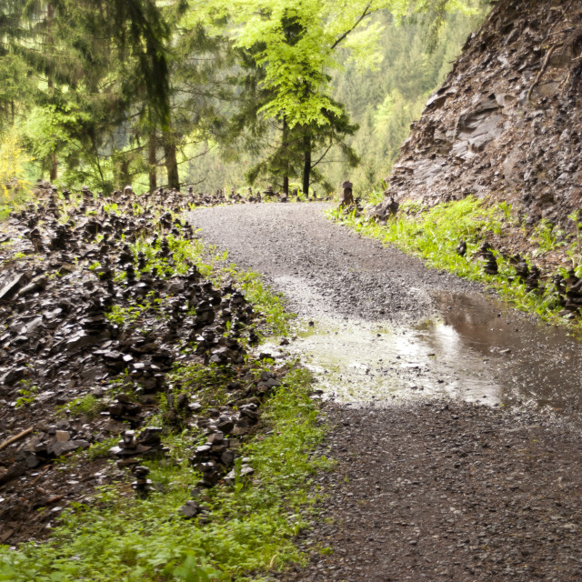 """On the Hiking Trail Eifelsteig"" stock image"