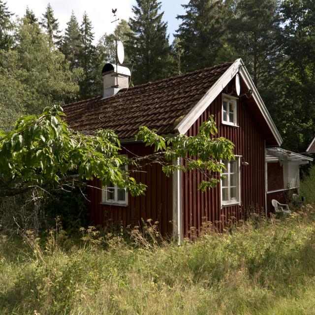 """""""Landscape at Lake Vaettern in Sweden"""" stock image"""