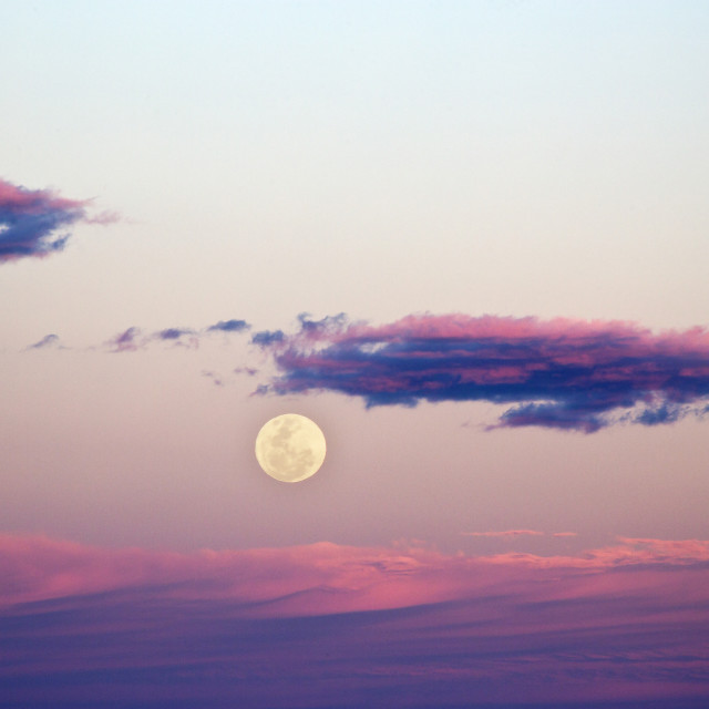 """""""Supermoon Rise at Sunset"""" stock image"""