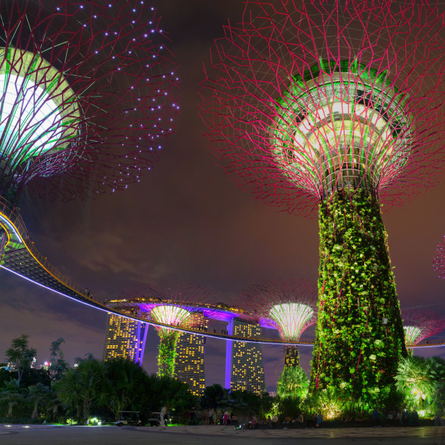 """Garden By the Bay light show, Singapore"" stock image"