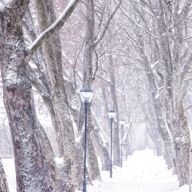 """Alley in snowy a day"" stock image"