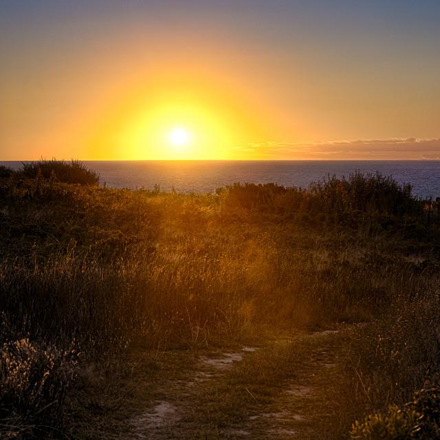 """Ocean sunrise path Truro Cape Cod"" stock image"