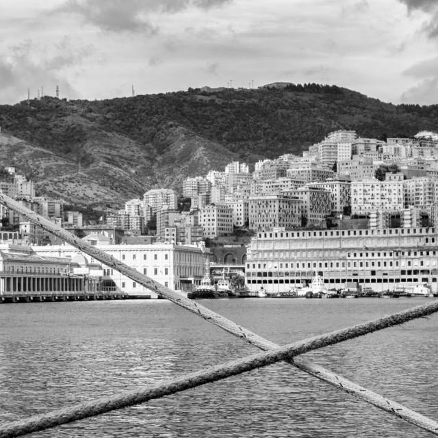 """""""Genoa In Ropes"""" stock image"""