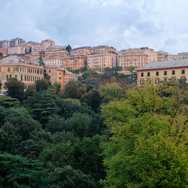 """""""Nature And Architecture In Genoa"""" stock image"""