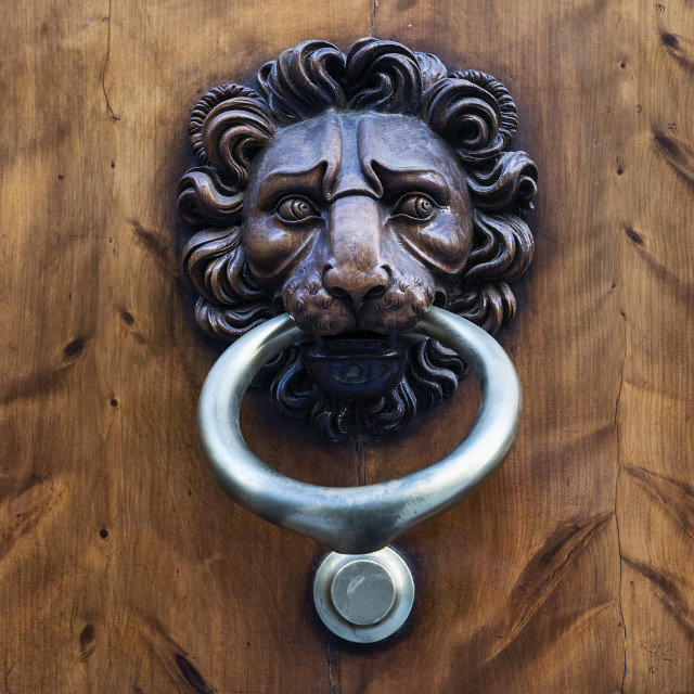 """Lion door knocker Florence Italy"" stock image"