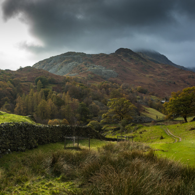 """""""Early Autum Lake District"""" stock image"""