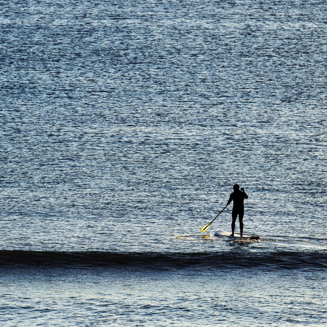 """""""Paddle board surfer"""" stock image"""