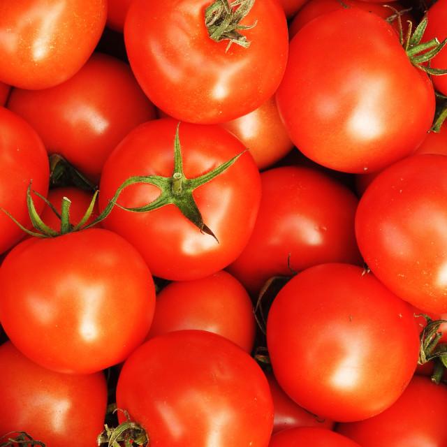 """Farmer's Market Tomatoes"" stock image"
