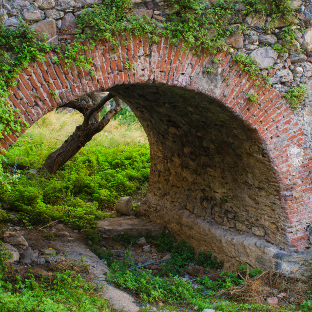 """""""Ancient Nature And Structure"""" stock image"""