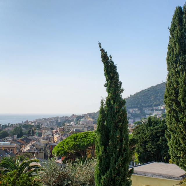 """Maritime Panorama Of Genoa Nervi"" stock image"