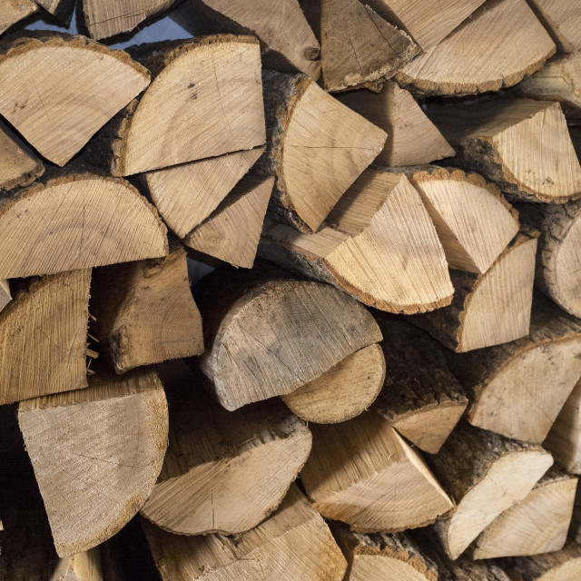 """Sawn cut logs for firewood."" stock image"