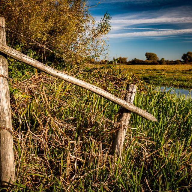 """Fenland fencing"" stock image"