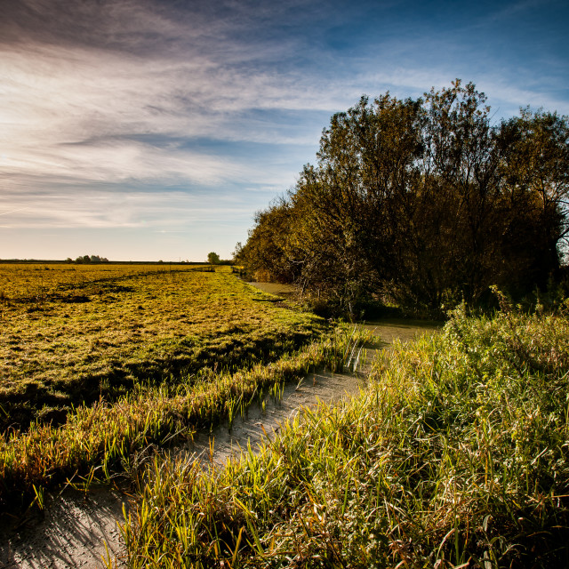 """""""Fenland channel"""" stock image"""