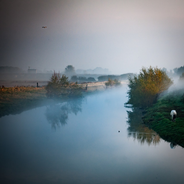 """""""Lowland river"""" stock image"""