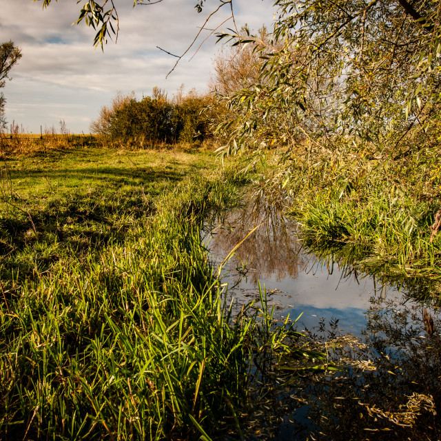 """Fenland watercourse"" stock image"