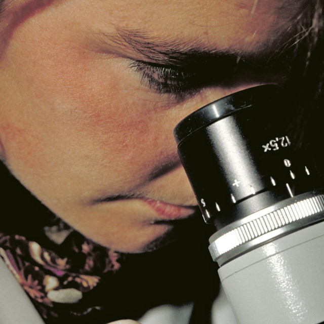 """""""Woman looking through a microscope."""" stock image"""