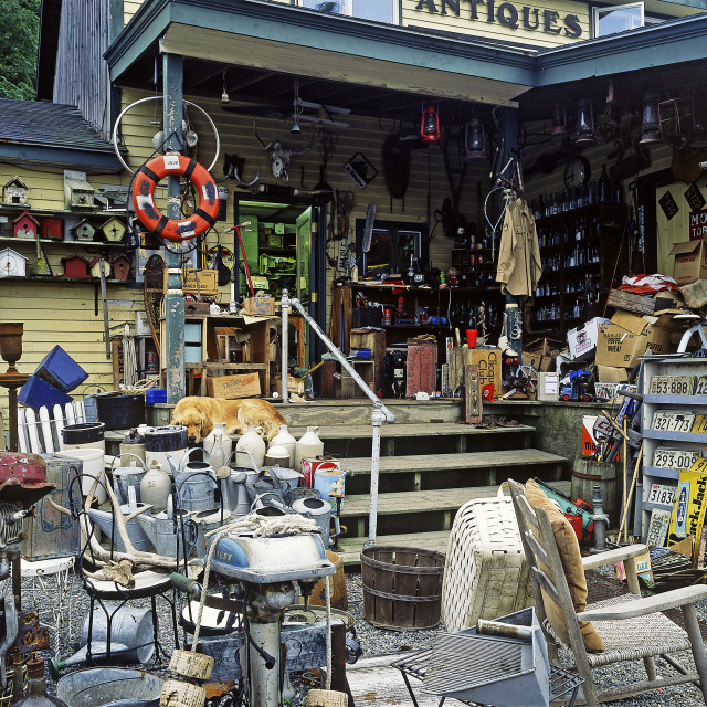 """""""Antique shop, Maine"""" stock image"""