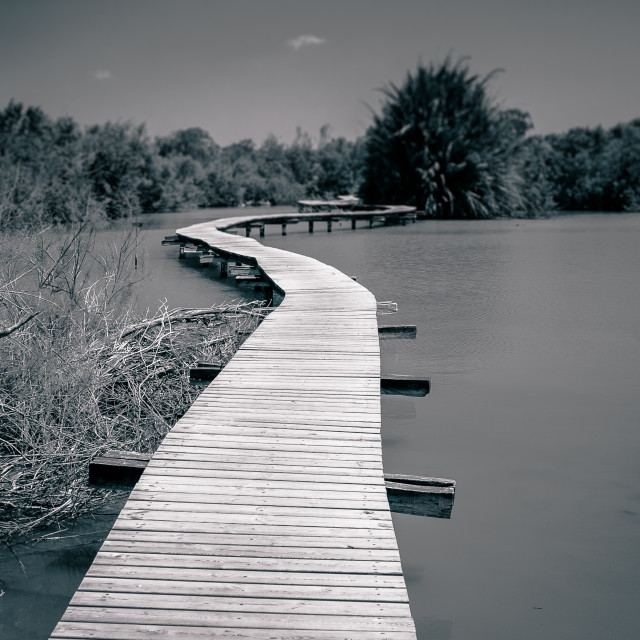 """Path over water"" stock image"