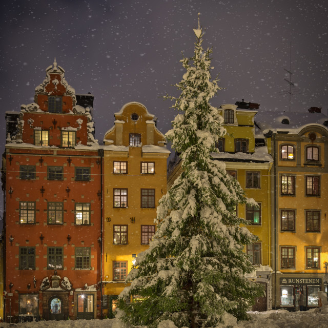 """Christmass time, Stockholm."" stock image"