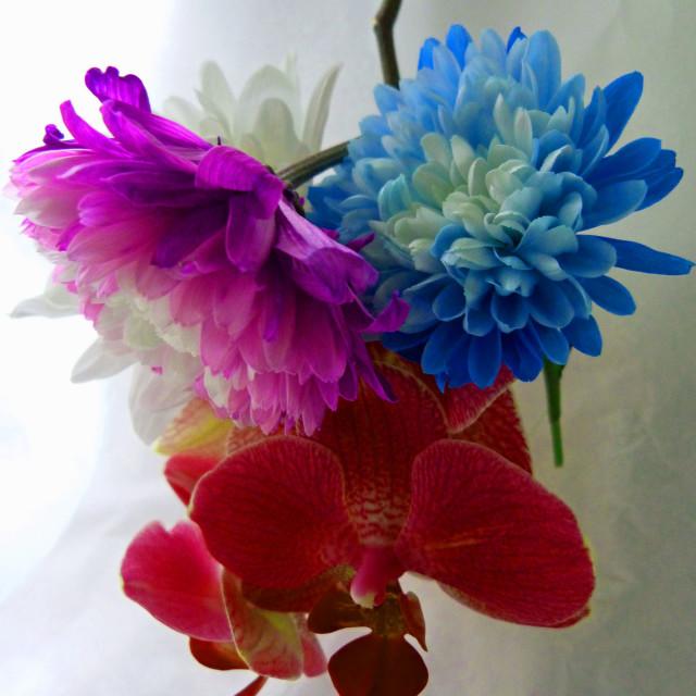 """Flower Arrangement"" stock image"