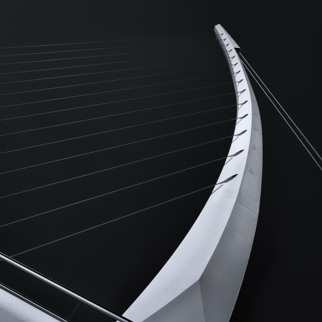 """Harp strings"" stock image"