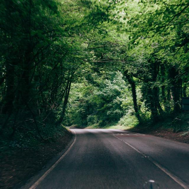 """Country Lane"" stock image"