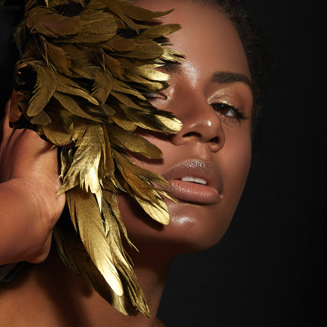 """""""Golden feathers."""" stock image"""